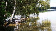 Озеро Свитязь в Беларуси