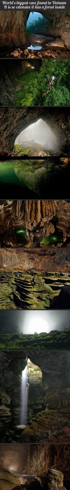 Explore the caves of Hang Son Doong, Vietnam, part of a network of over 150 caves. Surrounded by jungle and used in the Vietnam war as a hideout from American bombardments, the cave passage is so large that it could hold a block of 40-storey skyscrapers.