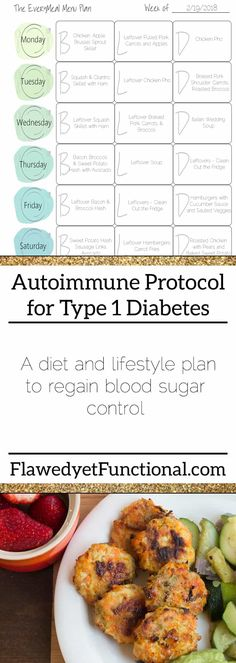 Autoimmune Protocol to Manage Type 1 Diabetes - Flawed yet Functional The Journey, Diabetic Meal Plan, Diabetic Snacks, Diabetic Recipes, Easy Lunches For Kids, Kids Meals, Types Of Insulin, Type One Diabetes, Type 1