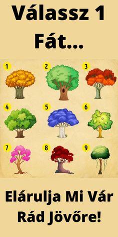 Válassz 1 fát, majd nézd meg az oldalon, hogy mi vár rád az újévben...