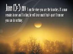 Bible Verses From The Book Of John Bible John Church Pray