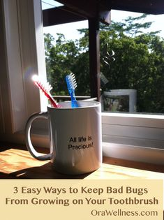 Toothbrushes-on-a-sunny-window-sill