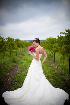 A stunning bride in a vineyard | Dustin Meyer Photography.