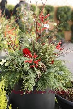 Muddy Boot Dreams: Christmas Planters a bright welcome at your door.