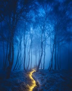 Photo: Fairy Path by James Mills Starry skies, glowing lights, and illuminated paths—for our Into The Night Photo Quest with Manfrotto , we asked you to submit your best night photography. Beautiful World, Beautiful Places, Beautiful Pictures, Magic Places, Fantasy Forest, Mystical Forest, Jolie Photo, Fantasy Landscape, Light Painting