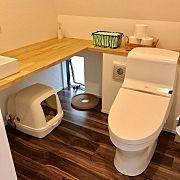 Overview,猫トイレ,注文住宅,LIXIL,ねこのいる日常,スイッチニッチに関連する他の写真