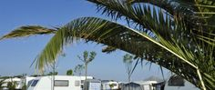 Why Your Kids Will Love Red Coconut RV Park - When planning a fun road-trip or vacation, it's a great idea to look into renting or buying an RV and taking it to an incredible location, such as Red Coconut RV Park. Red Coconut RV Park is a fabulous location for many attractions and allows for you to stay in your RV, camp and see the great sites around. Even better, it's the perfect and most affordable spot for kid to be and enjoy. Here's what you and your kids will love about Red Coconut RV P...