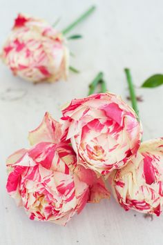 hautepinkeditor:  I used to get these roses a lot in my past business. They are stunning.