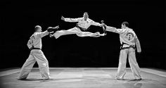 17 best tkd poses images  poses martial arts karate