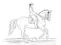 Dressage Horse Coloring Pages Horse Coloring Pages, Colouring Pages, Horse Drawings, Animal Drawings, Horse Outline, Disney Horses, Simple Canvas Paintings, Dressage Horses, Drawing Projects