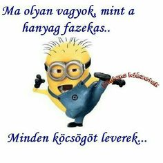 Funny Happy, Funny Photos, Sarcasm, Minions, Favorite Quotes, Funny Jokes, Quotations, Haha, Have Fun