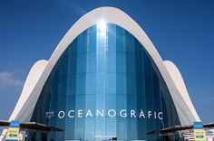 Hokum Deadfall Photography | Out and About - Oceanografic, Valencia, Spain