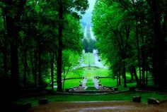 Percy Warner Park Old Stone Steps- Nashville TN