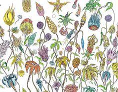 illustration of Flowers by Dimitris Kokoris. Watercolor on Paper New Work, Behance, Illustrations, Watercolor, Gallery, Check, Artwork, Artist, Flowers
