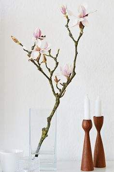 stylingfieber...: Friday-Flowerday...Magnolia Glass Vase, Candle Holders, Friday, Candles, Home Decor, Magnolias, Seasons Of The Year, Decorating Ideas, Homes