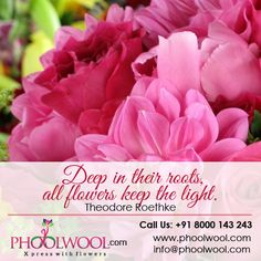 Deep in their roots, all flowers keep the light. Theodore Roethke, All Flowers, Roots, Deep, Plants, Plant, Planting, Planets