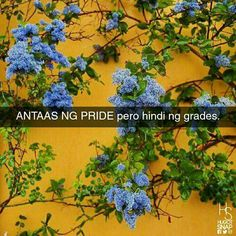 shout out sa mga estudyante jan. Hugot Quotes, Tagalog Quotes, Hugot Lines, Lost In Thought, Something New, Shout Out, More Fun, 1, Herbs