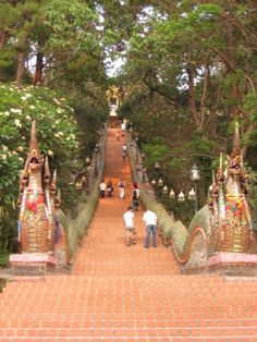 Thailand temple - over 400 steps Doi Suthep Temple near Chaing Mai. Best stair master, ever!!  Worth every step!