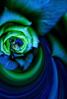 In blue and green Blue And Green, Blue Brown, Kelly Green, Color Shades, Shades Of Green, Verde Neon, Green Magic, Creative Colour, Green Fashion