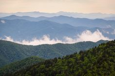 These gorgeous mountains are where we call home - The Great Smoky Mountains