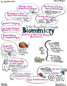 Biomimicry- learning from nature- past and present- to create a better human future.