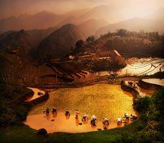 "Sa Pa - Lao Chai Province, Vietnam   ""ploughing season"" by Weerapong Chaipuck, via 500px."