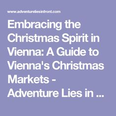 Embracing the Christmas Spirit in Vienna: A Guide to Vienna's Christmas Markets - Adventure Lies in Front