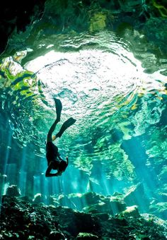 Free Diving: Cenote, Mexico - by Cade Butler