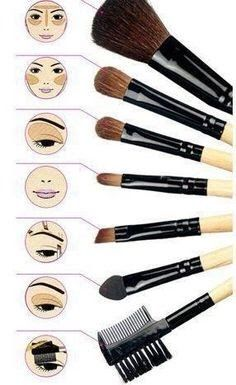 Makeup Brushes 101 # #Musely #Tip