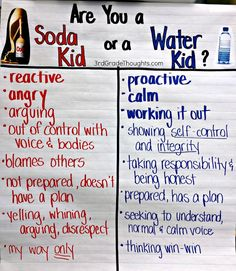 you a Soda Kid or a Water Kid? {Noticing our Reactions} Are you a Soda Kid or a Water Kid? - Being Proactive instead of Reactive & Noticing Our ReactionsAre you a Soda Kid or a Water Kid? - Being Proactive instead of Reactive & Noticing Our Reactions Classroom Behavior, Classroom Management, Class Management, Behavior Management, Classroom Ideas, Classroom Solutions, Classroom Rules, Classroom Posters, Classroom Resources