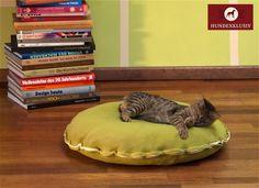 Katzenkissen Grün Divan Cinque  Edel im Design und und mit feinsten Materialien ausgestattet präsentieren wir das Katzenkissen Grün Divan Cinque. Ein Katzenzubehör für anspruchsvolle Samtpfoten. Das Besondere an dem Katzenkissen Grün Divan Cinque ist die geräuschlose Füllung mit hohem Raumgewicht. Die Katze liegt wie auf Wolken gebettet. Optisch fügt sich das Katzenkissen in jedem Raum wunderbar ein. Die reizende Borte in Creme setzt bei dem Katzenschlafplatz noch einen besonderen Akzent.