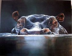 Hippo Head (Painting from Timo Wuerz)