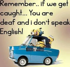 Funny minions quotes 318