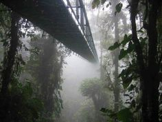 Hanging sky bridges of St Elena, Costa Rica. Nope, not going back to this one.