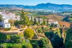 Ronda is a unique hilltop town in Andalusia, Spain built right on the edge of a cliff! Here are the best things to do in Ronda Spain. Andalusia Spain, Andalucia, Places To Travel, Travel Destinations, Travel Tips, Ronda Spain, Prague Travel, Travel Necessities, Spain Holidays