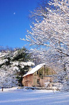 Connecticut Winter Beauty