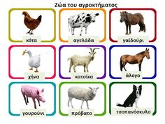 Montessori Activities, Circle Time, Early Education, Spring Crafts, Farm Animals, Preschool, Teaching, Infant, Fun