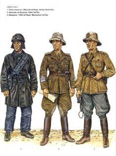 """Regio Esercito, Libia 1941 - 1 Comandante di carro, 132 Rgmt Carri, Divisione Corazzata """"Ariete"""" - 2 Generale di Divisone di fanteria """"Sirte"""" - 3 Maggiore, 116 Rgmt fanteria, Divisione """"Marmarica"""""""