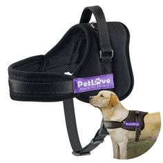 [ PetLove Dog Harness, Soft Leash Padded No Pull Dog Harness with All Kinds of Size ] Supplies # Harnesses & Leashes Halter Harnesses All Types Of Dogs, Dog Safety, Dog Diapers, Dog Harness, Dog Walking, Large Dogs, Dog Owners, Paracord, Dog Training