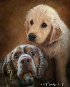 Custom Portrait Custom Pet Portrait Golden Retriever от Artimoment