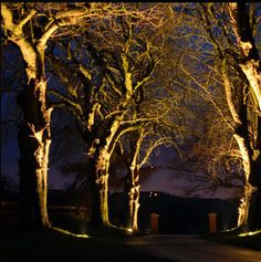Driveway Lite · Good LightingOutdoor LightingLandscape ...