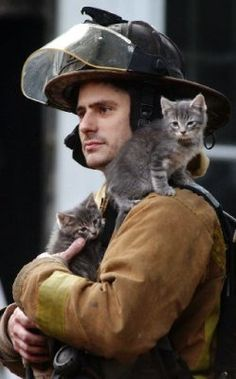 Firefighter rescuing kittens.