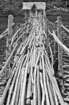 The Bridge of Bamboo - TEOMONTANA