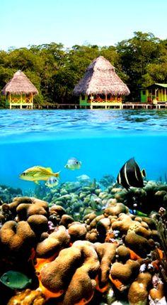 BOCAS del TORO - PANAMA. 20 takes off #airbnb #airbnbcoupon #cuba