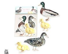 Surface Pattern Designs by TasherellaKitty on Etsy Duck Family Vinyl Sticker Collection - Ducklings Pattern Designs, Surface Pattern Design, Stationary Supplies, Artisan, Etsy Seller, Sticker, Creative, Animals, Collection