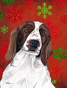 Carolines Treasures SC9420GF Welsh Springer Spaniel Snowflakes Christmas Flag Small Multicolor *** Be sure to check out this awesome product.