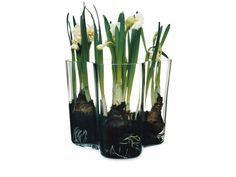 Alvar Aalto, vase set 160 + 95 mm, clear - Iittala - Bohero