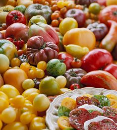 Check out this guide to help you choose the best tomatoes to grow in your vegetable garden. /