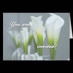 Invited Greeting Cards / Announcements