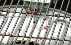 Dankzij deze truc verwijder je hardnekkige etensresten op het barbecuerooster